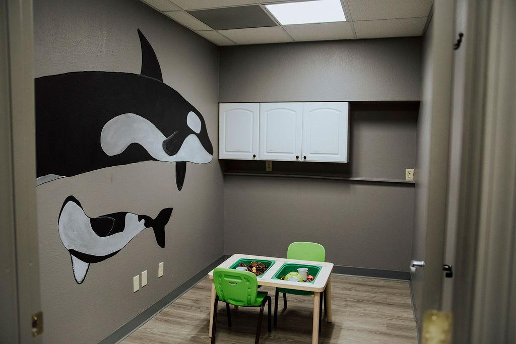 bright behavior facility programs